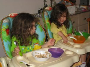 Week with Twins in Brookline 2